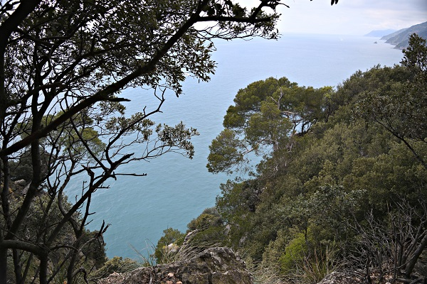 Palmaria-Portovenere-Ligurië (10)
