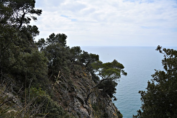 Palmaria-Portovenere-Ligurië (11)
