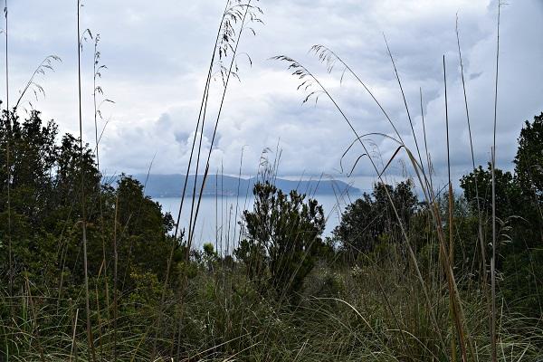 Palmaria-Portovenere-Ligurië (4)