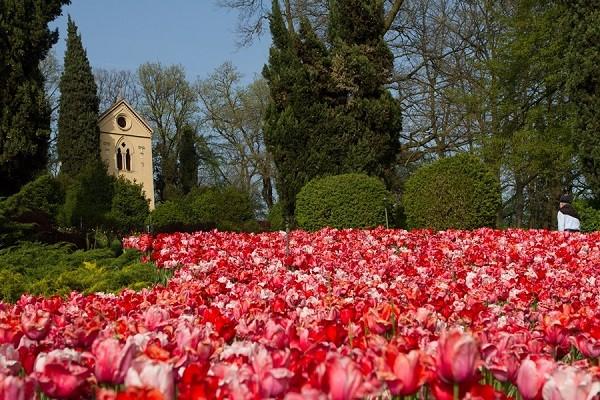 Parco-Giardino-Sigurta-Tulip-Mania-tulpen (5)