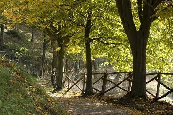 Parco-Sigurta-Gardameer (10)