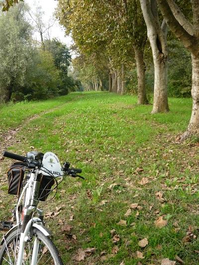Parco-del-Mincio (6)