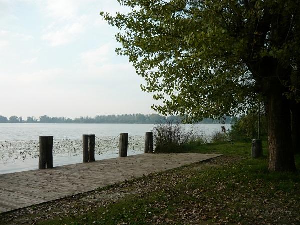 Parco-del-Mincio (8)