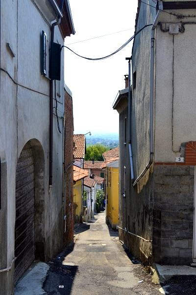 Piemonte-Eline (3)