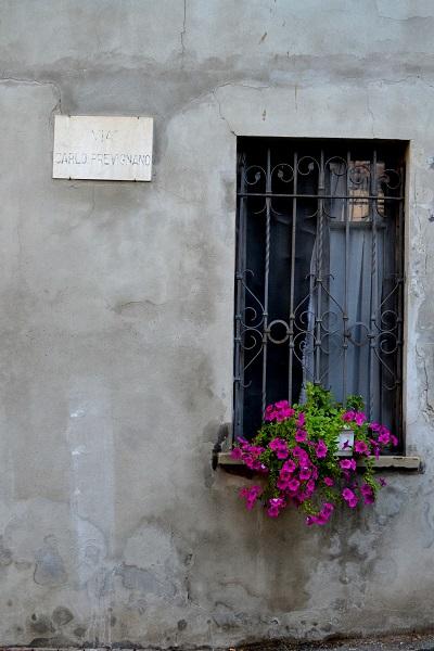 Piemonte-Eline (5)