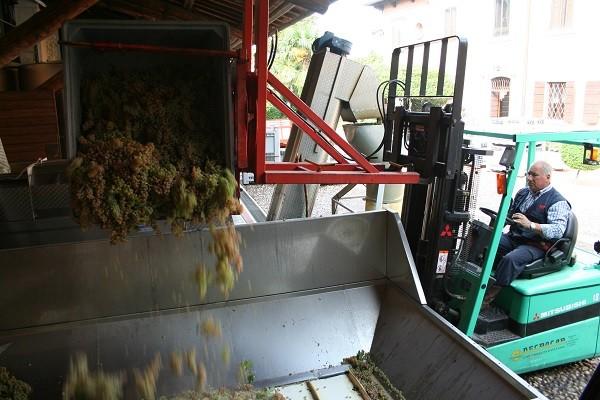 Pieropan-wijn-Soave (7)