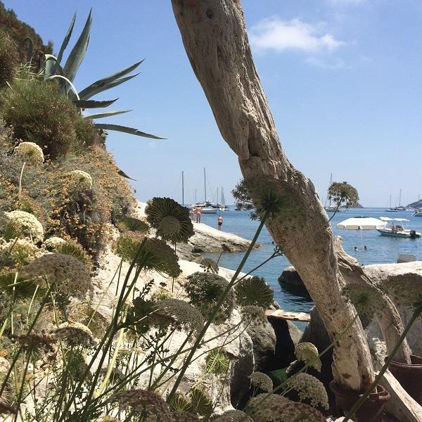 Ponza-Spiaggia-Frontone-strand (2)