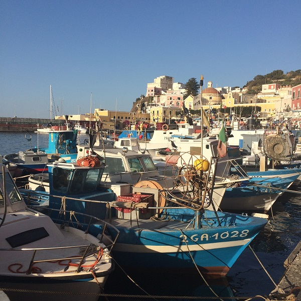 Ponza-haven-bootjes