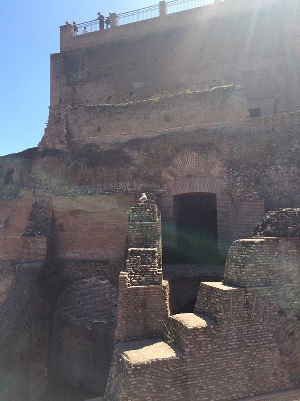 Rampa-Imperiale-Forum-Romanum-Rome (3)