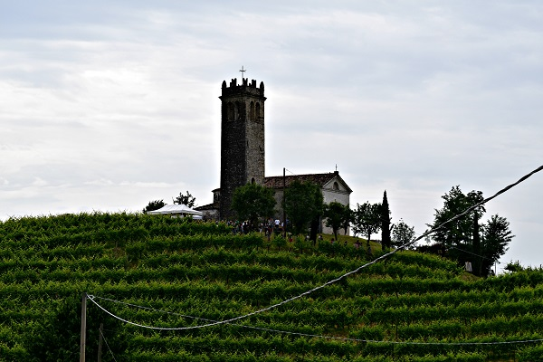 Rive-Vive-prosecco-wijngaarden-Veneto-feest-wandelen (10a)