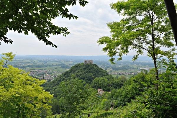 Rive-Vive-prosecco-wijngaarden-Veneto-feest-wandelen (13)
