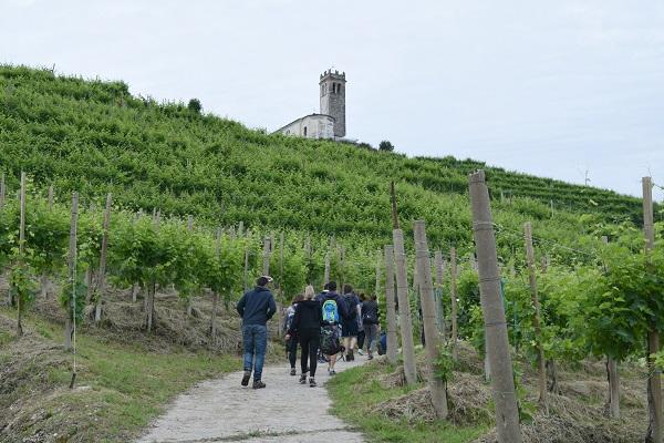 Rive-Vive-prosecco-wijngaarden-Veneto-feest-wandelen (4)