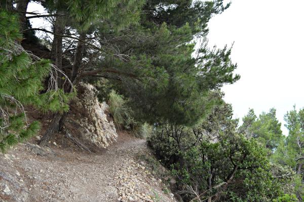 Riviera-del-Coner-Le-Marche (3)