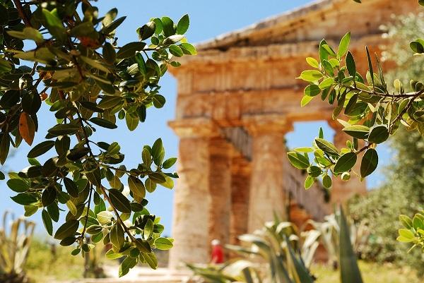 Segesta-tempel-Sicilie