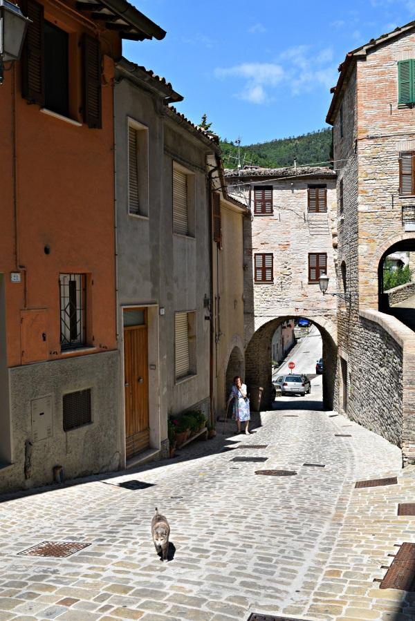 Serra-San-Quirico-Le-Marche (2c)