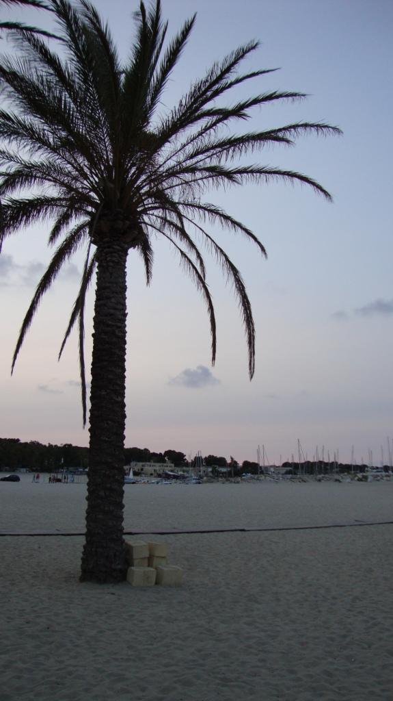 Sicilia 2013 476