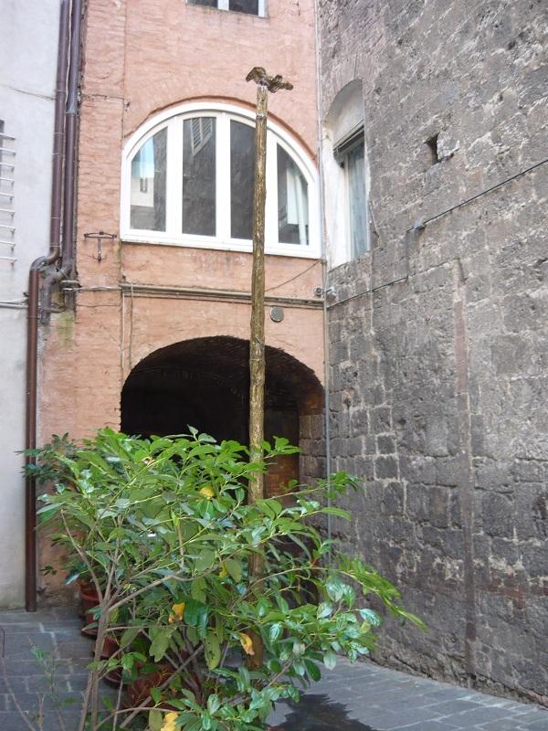 Siena-Civetta-Castellare-1