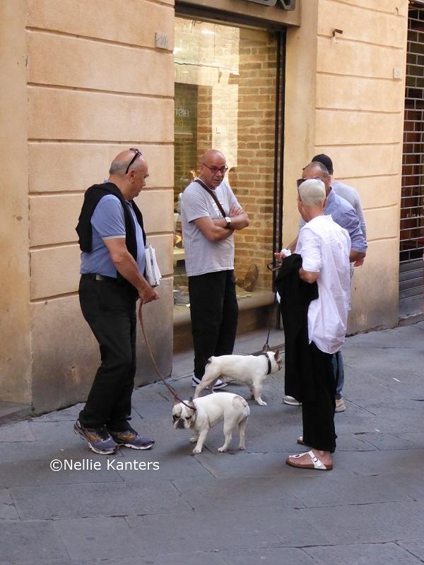 Siena-foto-Nellie-Kanters (2)