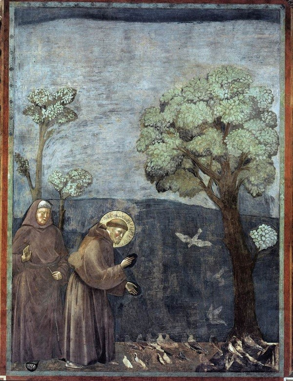 Sint-Franciscus-preekt-voor-de-vogels-Giotto-fresco-San-Francesco-Assisi