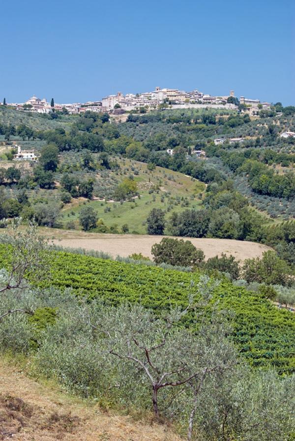 Strada-Sagrantino-Umbrie-Montefalco-3