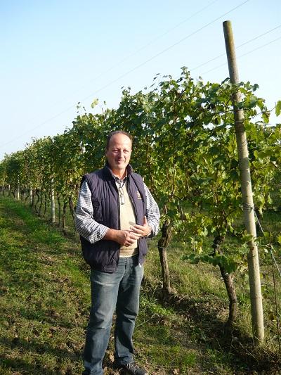 Tenuta-Roveglia-wijngaard