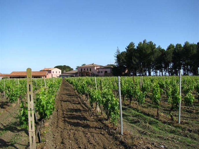Tenuta-San-Michele-Sicilie-Eliza-was-here-2