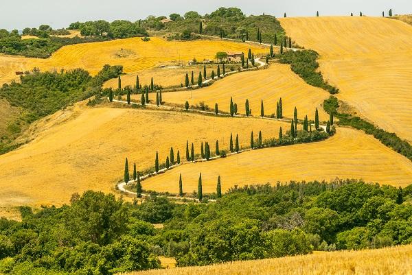 Toscane-La-Foce-cipressen-weg