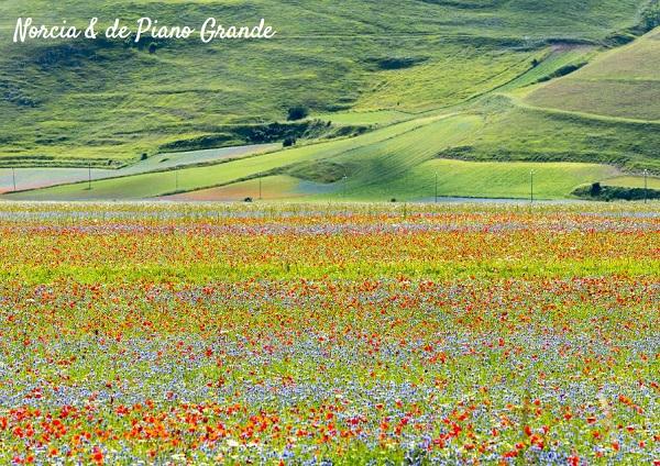 Umbrië-het-groene-hart-van-Italië-reisgids-15