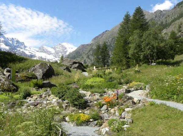 Valle-Aosta-Gran-Paradiso-botanische-tuin