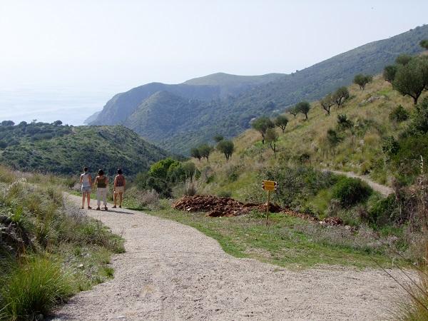 Vallone-Marcellino-Cilento (10)