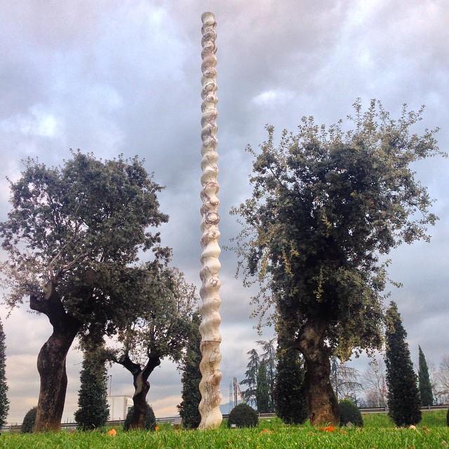 Vannucci-Piante-Pistoia (6)