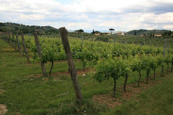 Vespa-tour-Toscane (14)