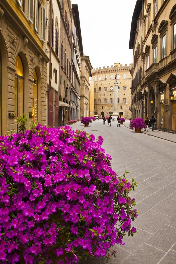 Via-Tornabuoni-Florence (2)
