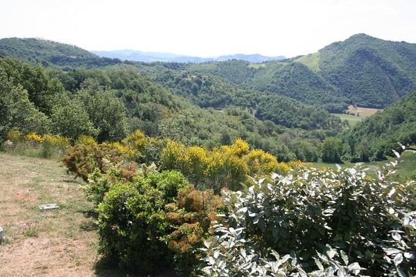 Villa-Belvedere (1)
