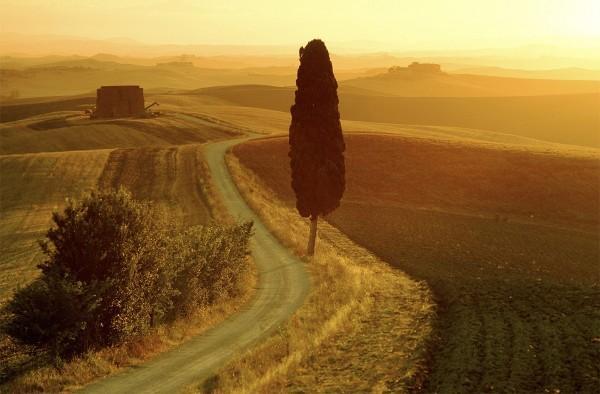 Villa-Capezzine-Toscane-Holiday-1