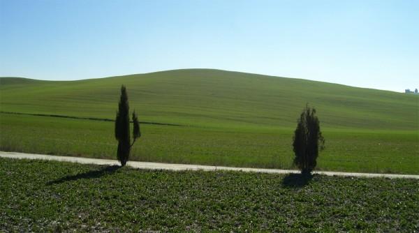 Villa-Ceppeto-Toscane-Holiday-2