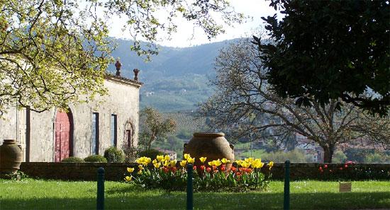Villa-La-Magia5