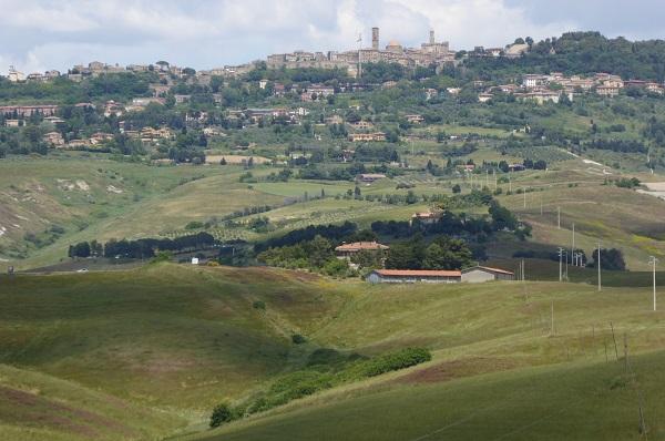 Volterra-Rene-Hogeveen (2)