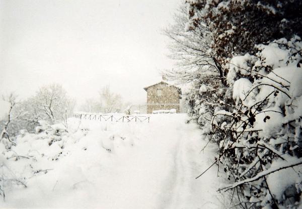 Winter-in-Caldese