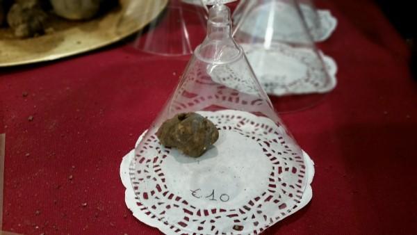 Witte-truffel-festival-San-Miniato (35)