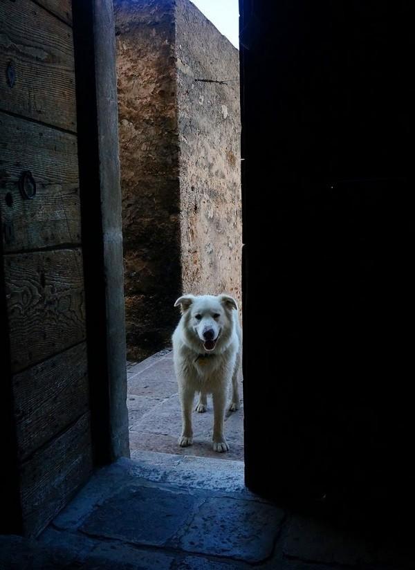 albergo-diffuso-Sextantio-Abruzzo (1)