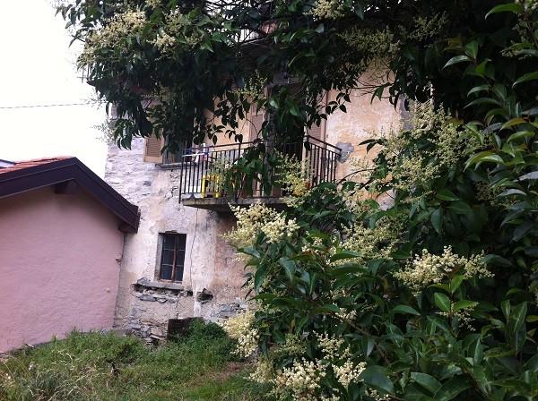 appartement-Pognana-Lario-Comomeer (1)