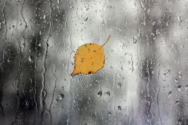 ballata-autunno-Mina