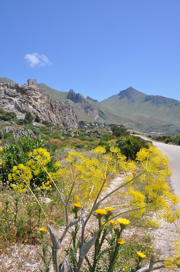 bergen-klimmen-San-Vito-lo-Capo (3)