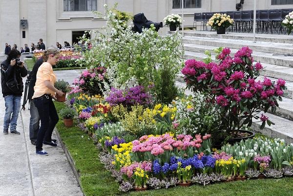 bloemen-Pasen-Sint-Pietersplein-Rome (10)