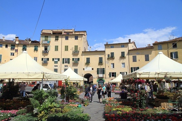bloemenmarkt-Piazza-dell'Anfiteatro-Lucca (2)