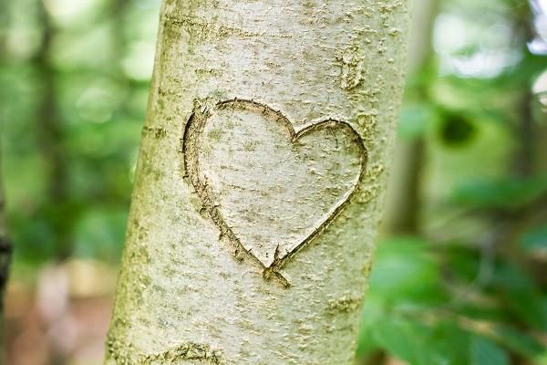 boom-huwelijk