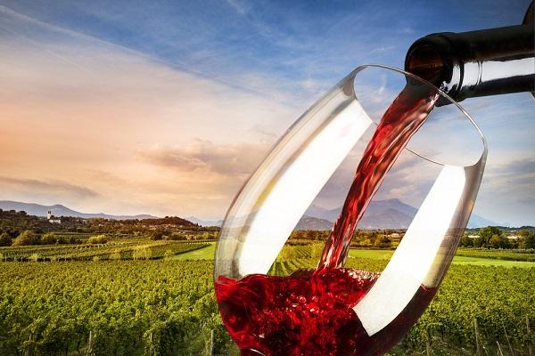buon-vino