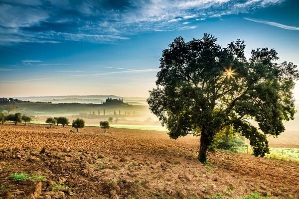 een-eigen-huis-in-Toscane (2)