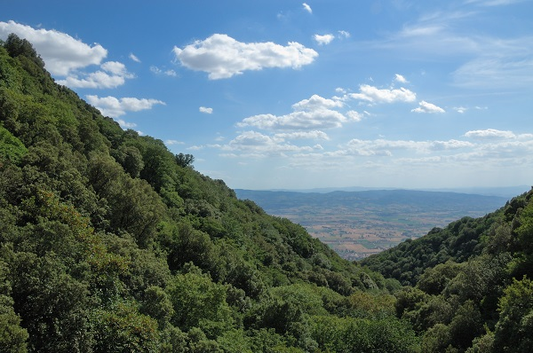 Eremo-delle-Carceri-Franciscus-Assisi-Umbrie (4)